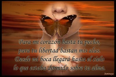Neruda- Para mi corazón basta tu pecho, para tu libertad bastan mis alas...